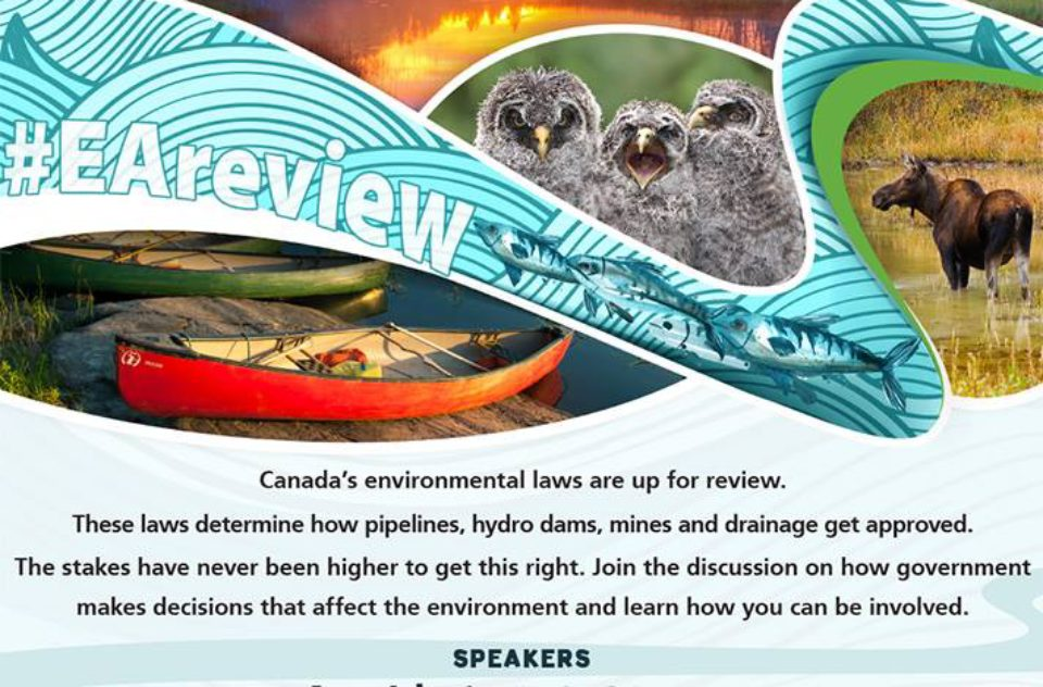 Environmental Law poster