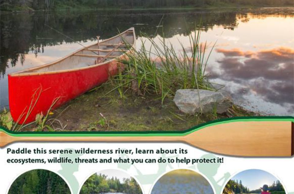 Paddle for Protection poster